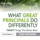 What Great Principals Do Differently: Twenty Things That Matter Most Audiobook