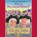 What is the Constitution? Audiobook