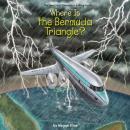 Where is the Bermuda Triangle? Audiobook