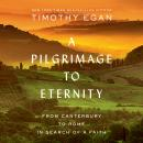 A Pilgrimage to Eternity: From Canterbury to Rome in Search of a Faith Audiobook