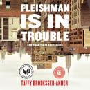 Fleishman Is in Trouble: A Novel, Taffy Brodesser-Akner