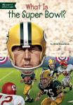 What Is the Super Bowl? Audiobook