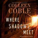 Where Shadows Meet: A Romantic Suspense Novel Audiobook