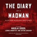 The Diary of a Madman, and Other Russian Sketches Audiobook