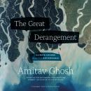 The Great Derangement: Climate Change and the Unthinkable Audiobook