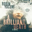 A Brilliant Death: A Novel Audiobook