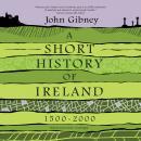 A Short History of Ireland, 1500-2000 Audiobook