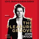 In the Pleasure Groove: Love, Death, and Duran Duran Audiobook