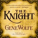 The Knight: Book One of The Wizard Knight Audiobook