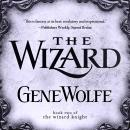 The Wizard: Book Two of The Wizard Knight Audiobook