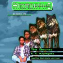 The Secret Audiobook