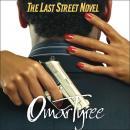 The Last Street Novel Audiobook