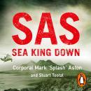 SAS: Sea King Down Audiobook