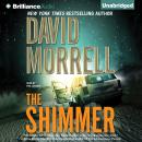 The Shimmer Audiobook