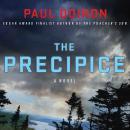 The Precipice: A Novel Audiobook