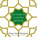 Letters to a Young Muslim Audiobook