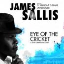 Eye of the Cricket, James Sallis