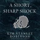 A Short, Sharp Shock Audiobook
