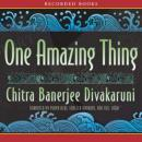 One Amazing Thing Audiobook