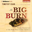 The Big Burn Audiobook
