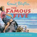 Five Fall Into Adventure Audiobook