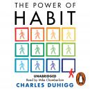 Power of Habit: Why We Do What We Do, and How to Change, Charles Duhigg