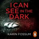 I Can See in the Dark, Karin Fossum