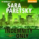 Indemnity Only, Sara Paretsky