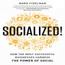 Socialized!: How th Most Successful Businesses Harness the Power of Social, Mark Fidelman