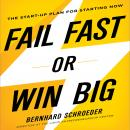 Fail Fast or Win Big: The Start-Up Plan for Starting Now, Bernhard Schroeder