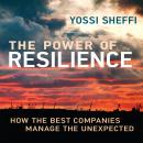 Power of Resilience: How the Best Companies Manage the Unexpected, Yossi Sheffi