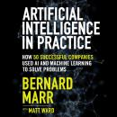 Artificial Intelligence in Practice: How 50 Successful Companies Used AI and Machine Learning to Sol Audiobook