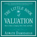 The Little Book of Valuation: How to Value a Company, Pick a Stock and Profit Audiobook