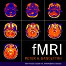 fMRI Audiobook