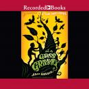 In a Glass Grimmly Audiobook