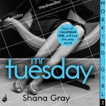 Working Girl: Mr Tuesday Audiobook
