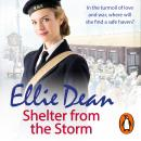 Shelter from the Storm: Cliffehaven 11, Ellie Dean