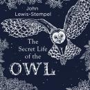 The Secret Life of the Owl Audiobook
