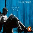 Black Boy Audiobook