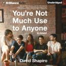 You're Not Much Use to Anyone: A Novel, David Shapiro
