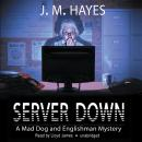 Server Down: A Mad Dog and Englishman Mystery, J. M. Hayes