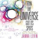 How the Universe Got Its Spots: Diary of a Finite Time in a Finite Space, Janna Levin
