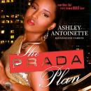 The Prada Plan Audiobook