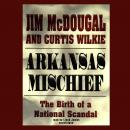 Arkansas Mischief: The Birth of a National Scandal, Jim McDougal