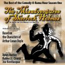 The Misadventures of Sherlock Holmes: The Honest and True Memoirs of a Nonentity Audiobook
