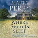 Where Secrets Sleep Audiobook