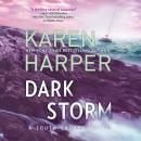 Dark Storm Audiobook