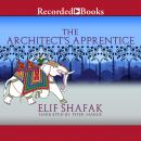 The Architect's Apprentice Audiobook