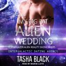 My Big Fat Alien Wedding Audiobook