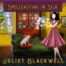 Spellcasting in Silk Audiobook